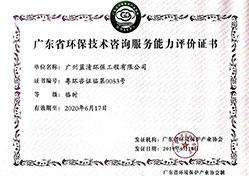广东省dafacasino技术咨询能力服务评价证书